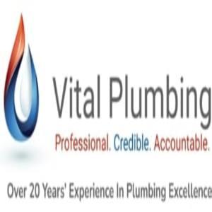 Vital Plumbing